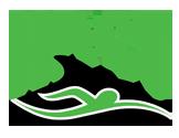 Haines Dolphins Swimboree
